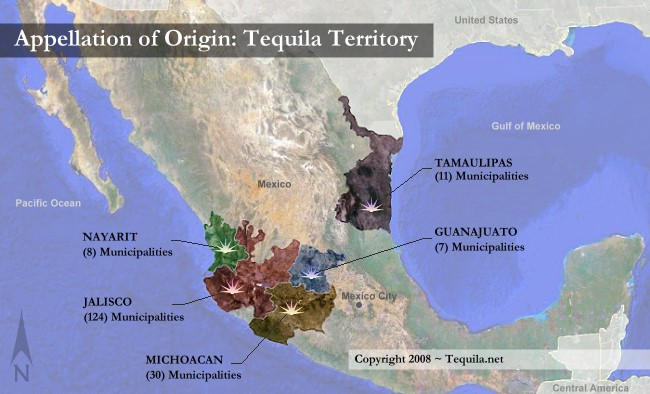 Where Is Your Favorite Tequila From Bruin Spirits